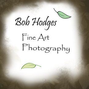 Bob Hodges Photography