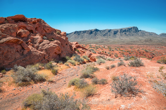 Valley_of_Fire_NV_2