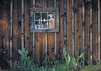 IMG_4867_Shed_Window