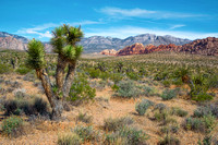 Red_Rock_Canyon_NV_2